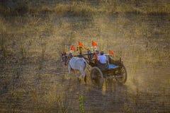Rural road at sunset in Bagan, Myanmar Royalty Free Stock Images