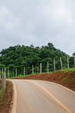 Rural road. A rural road in Thailand Royalty Free Stock Images
