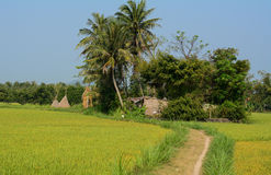 Rural road to the small house at countryside in Danang, Vietnam Royalty Free Stock Photos