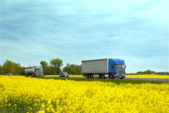 The rural road with traffic. The road with traffic among yellow fields of rape in east europe Royalty Free Stock Photography