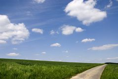 Rural road under blue sky. Rural road between green field Royalty Free Stock Images