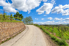 Rural road under blue sky in Piedmont, Italy. Stock Photo