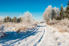 Rural road in winter deep snow Stock Images