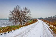 Rural road in winter with snow Royalty Free Stock Photo