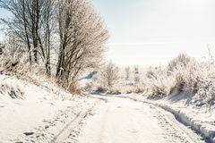 Rural road in winter Royalty Free Stock Photo