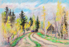 Rural road. In wood birches  and old spruces Stock Photos