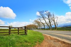 Rural road, wooden fence and blue sky Royalty Free Stock Images
