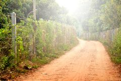 Rural Roads With The Fence. Royalty Free Stock Photography