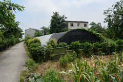 Rural roadside greenhouse in sunny summer Royalty Free Stock Image