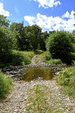 Rural roadway leads through a flowing creek Royalty Free Stock Photos