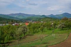 Rural Romania stock photos