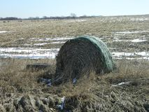 Round Hay Bale Royalty Free Stock Photo