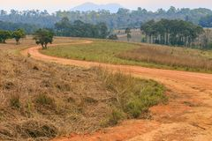 Rural S curve road in Tung Salang Luang National Forest Park, Th Stock Images