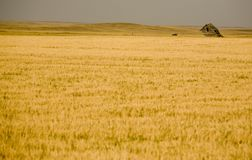 Rural Saskatchewan Royalty Free Stock Photo