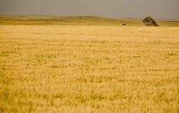 Rural Saskatchewan Royalty Free Stock Photo