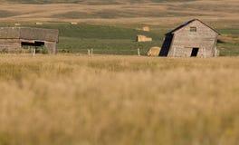Rural Saskatchewan Royalty Free Stock Image