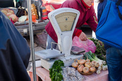Rural scale and various harvest vegetable on stall Royalty Free Stock Photography