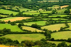 Rural Scene. Patchwork of countryside devon uk stock images