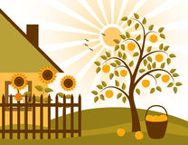 Rural scene. Illustrated rural scene with apple tree, sunflowers behind fence and cottage Royalty Free Stock Photography