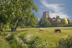 A Rural Scene. The church at Frampton on Severn in Gloucestershire, England, is situated at the edge of the village Stock Photos