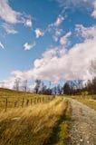 Rural scene. Last days of the autumn Stock Photography
