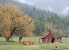 A rural scene. Image of a barn and trees on the farm Stock Photo