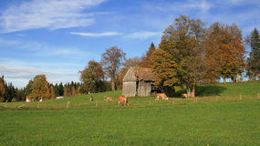 Rural scene in Bavaria Royalty Free Stock Photos