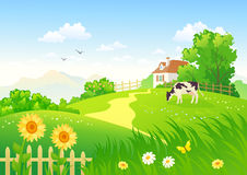 Rural scene with a cow. Illustration of a beautiful summer rural scene with a grazing cow Royalty Free Stock Photo