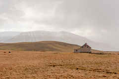 Rural scene in Iceland. Open landscape with a small house in rural Iceland in winter Royalty Free Stock Images