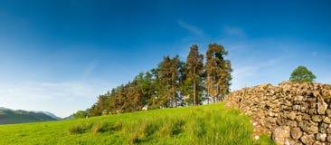 Rural scene, Lake District, UK Stock Photos