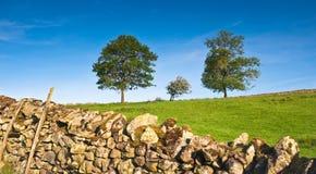 Rural scene, Lake District, UK Stock Photography