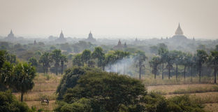 Rural scene with many temples in Bagan, Myanmar Stock Photos