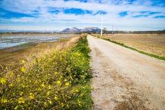 Rural scene Stock Photography