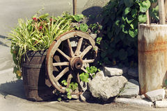 Rural scene with plants and wooden wheel. Rural scene with plants in pots and decorations wooden wheel Stock Images