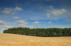 Rural scene in Shropshire UK Stock Images