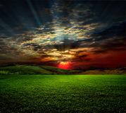 Rural scene on sunset. Field of grass. meadow wheat under sky Royalty Free Stock Images