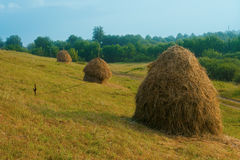 Rural scene Royalty Free Stock Photos