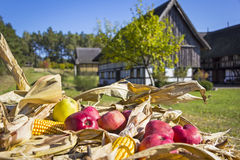 Rural scene in the village in autumn Royalty Free Stock Images
