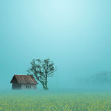 Rural Scenery. The beautiful rural scenery in the spring Royalty Free Stock Images