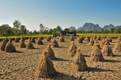 Rural scenery. In Guilin Guangxi China Stock Images