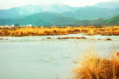 Rural scenery. Winter rural scenery located at China south area Royalty Free Stock Photo