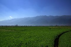 Rural scenery around Erhai lake and Dali, Yunnan province, China Stock Photo