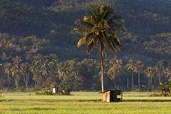 Rural scenery deep inside Sabah, Borneo Stock Images