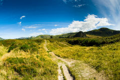 Rural scenery at dunedin Royalty Free Stock Image