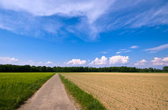Rural scenery with road. Country road through a rural farmlandscape with nice cloudscape Royalty Free Stock Photos