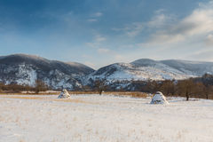 Rural scenery with snow covered fields and haystacks, in winter Stock Photos