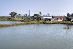 Rural scenic of fish pond Royalty Free Stock Photo