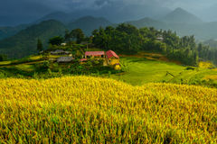 A rural school in the valley, Mu cang chai, Vietnam. Stock Image