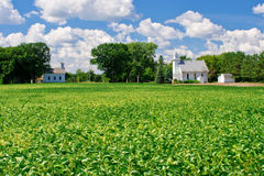Rural schoolhouse and church. A small schoolhouse, white church and farmland, in rural minnesota Stock Photography