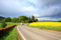 Rural Scottish road with fields of rape Royalty Free Stock Photos